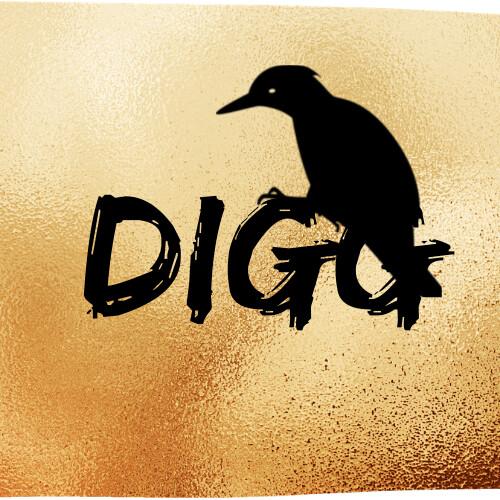 DIGG (1)